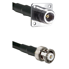 N 4 Hole Female Connector On LMR-240UF UltraFlex To MHV Male Connector Cable Assembly