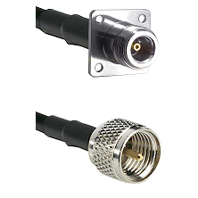 N 4 Hole Female Connector On LMR-240UF UltraFlex To Mini-UHF Male Connector Cable Assembly