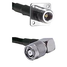 N 4 Hole Female Connector On LMR-240UF UltraFlex To TNC Reverse Polarity Right Angle Male Connector