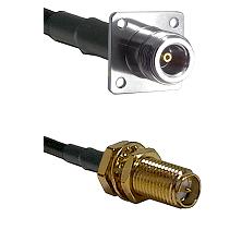 N 4 Hole Female Connector On LMR-240UF UltraFlex To SMA Reverse Polarity Female Bulkhead Connector C