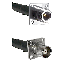 N 4 Hole Female on RG142 to C 4 Hole Female Cable Assembly