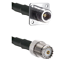 N 4 Hole Female on RG142 to Mini-UHF Female Cable Assembly