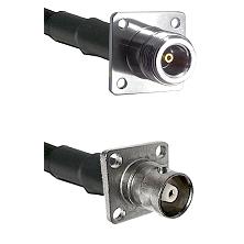 N 4 Hole Female on RG58C/U to C 4 Hole Female Cable Assembly