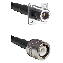 N 4 Hole Female on RG58C/U to C Male Cable Assembly