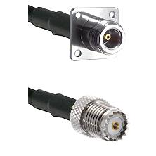 N 4 Hole Female on RG58 to Mini-UHF Female Cable Assembly