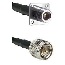N 4 Hole Female on RG58C/U to Mini-UHF Male Cable Assembly