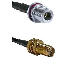 N Female Bulkhead on LMR100 to SMA Reverse Polarity Female Bulkhead Cable Assembly