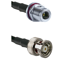 N Female Bulkhead on LMR-195-UF UltraFlex to BNC Reverse Polarity Male Cable Assembly