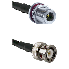 N Female Bulkhead on LMR200 UltraFlex to BNC Male Cable Assembly