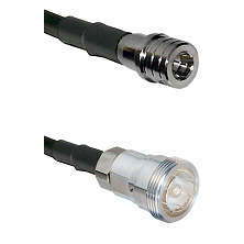 QMA Male Connector On LMR-240UF UltraFlex To 7/16 Din Female Connector Cable Assembly