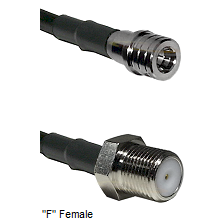 QMA Male Connector On LMR-240UF UltraFlex To F Female Connector Cable Assembly
