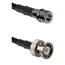 QMA Male on RG58C/U to BNC Male Cable Assembly