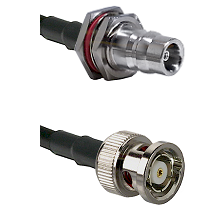 QN Female Bulkhead on LMR100 to BNC Reverse Polarity Male Cable Assembly