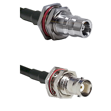 QN Female Bulkhead Connector On LMR-240UF UltraFlex To BNC Female Bulkhead Connector Coaxial Cable A