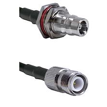 QN Female Bulkhead Connector On LMR-240UF UltraFlex To TNC Reverse Polarity Female Connector Coaxial
