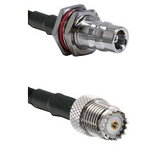 QN Female Bulkhead on RG142 to Mini-UHF Female Cable Assembly