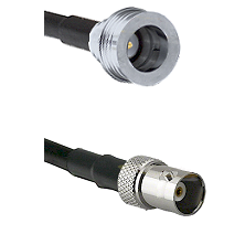 QN Male on LMR100 to BNC Female Cable Assembly