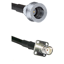 QN Male on LMR100 to BNC 4 Hole Female Cable Assembly