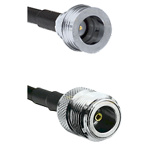 QN Male on LMR100 to N Female Cable Assembly