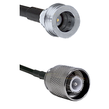 QN Male on LMR-195-UF UltraFlex to SC Male Cable Assembly