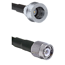 QN Male Connector On LMR-240UF UltraFlex To TNC Male Connector Cable Assembly