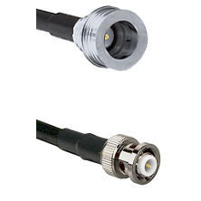 QN Male on RG142 to MHV Male Cable Assembly