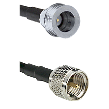 QN Male on RG142 to Mini-UHF Male Cable Assembly