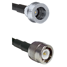 QN Male on RG58C/U to C Male Cable Assembly