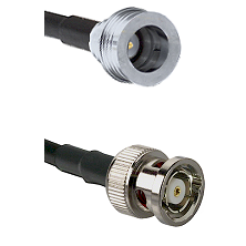 QN Male on RG58C/U to BNC Reverse Polarity Male Cable Assembly