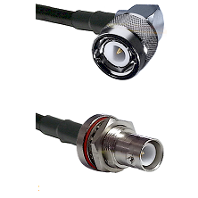 C Right Angle Male Connector On LMR-240UF UltraFlex To SHV Bulkhead Jack Connector Coaxial Cable Ass
