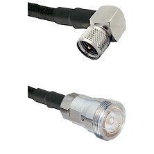 Mini-UHF Right Angle Male Connector On LMR-240UF UltraFlex To 7/16 Din Female Connector Coaxial Cabl