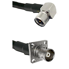Mini-UHF Right Angle Male Connector On LMR-240UF UltraFlex To C 4 Hole Female Connector Coaxial Cabl