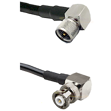 Mini-UHF Right Angle Male Connector On LMR-240UF UltraFlex To MHV Right Angle Male Connector Coaxial