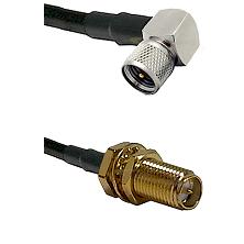 Mini-UHF Right Angle Male on LMR240 Ultra Flex to SMA Reverse Polarity Female Bulkhead Coaxial Cable