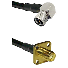 Mini-UHF Right Angle Male on LMR240 Ultra Flex to SMA 4 Hole Female Cable Assembly