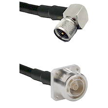 Mini-UHF Right Angle Male on RG142 to 7/16 4 Hole Female Cable Assembly