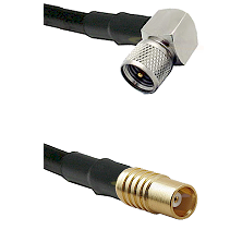 Mini-UHF Right Angle Male on RG142 to MCX Female Cable Assembly