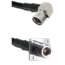 Mini-UHF Right Angle Male on RG142 to N 4 Hole Female Cable Assembly