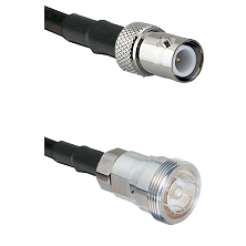 BNC Reverse Polarity Female on RG142 to 7/16 Din Female Cable Assembly