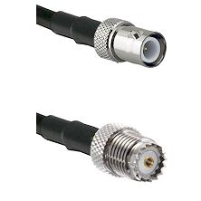 BNC Reverse Polarity Female on RG142 to Mini-UHF Female Cable Assembly