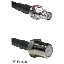 BNC Reverse Polarity Female Bulkhead Connector On LMR-240UF UltraFlex To F Female Connector Coaxial