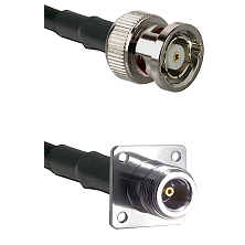 BNC Reverse Polarity Male on LMR100 to N 4 Hole Female Cable Assembly