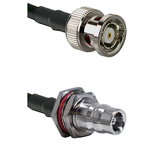BNC Reverse Polarity Male on LMR100 to QN Female Bulkhead Cable Assembly