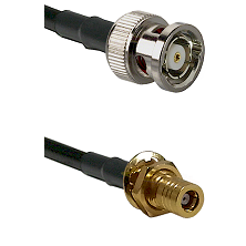 BNC Reverse Polarity Male on LMR100 to SSLB Female Bulkhead Cable Assembly