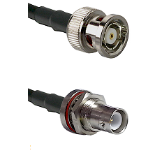 BNC Reverse Polarity Male Connector On LMR-240UF UltraFlex To SHV Bulkhead Jack Connector Coaxial Ca