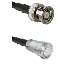 BNC Reverse Polarity Male on RG142 to 7/16 Din Female Cable Assembly