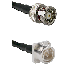 BNC Reverse Polarity Male on RG142 to 7/16 4 Hole Female Cable Assembly