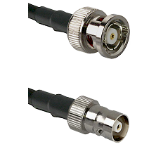 BNC Reverse Polarity Male on RG142 to C Female Cable Assembly