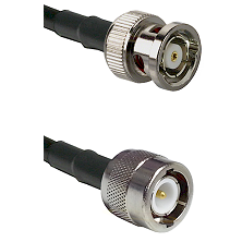 BNC Reverse Polarity Male on RG142 to C Male Cable Assembly