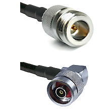 N Reverse Polarity Female on LMR240 Ultra Flex to N Reverse Polarity Right Angle Male Coaxial Cable